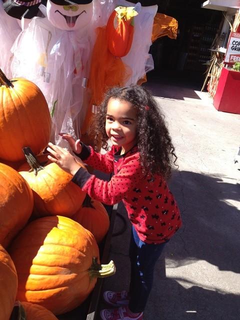 Kira Pumpkins Stews